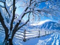 L'islam... P-paysage-neige